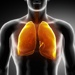 OMRF helps identify new target in fight against cystic fibrosis