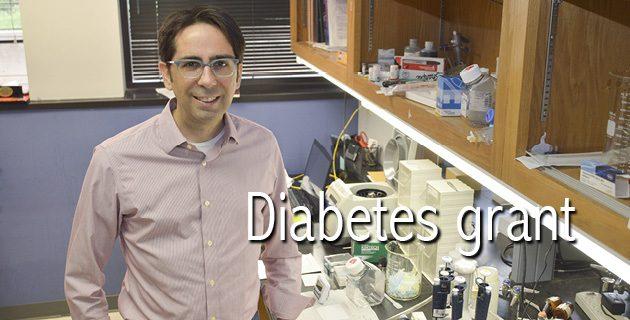 DiabetesGrant