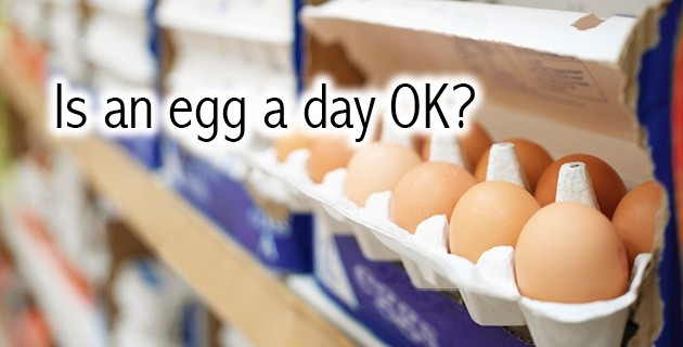 Egg a Day