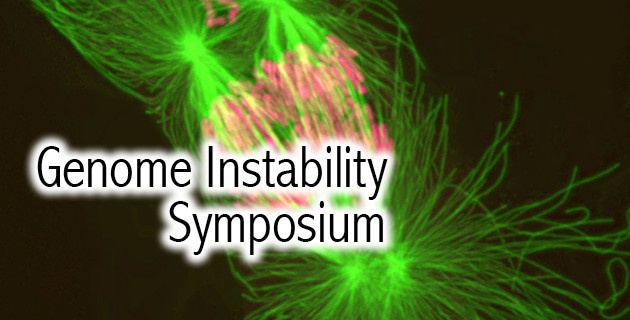 genome-instability-630×320