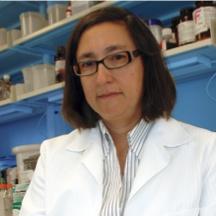Marta E. Alarcón-Riquelme, M.D., Ph.D.