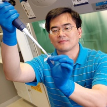 Weidong Wang, M.D., Ph.D.