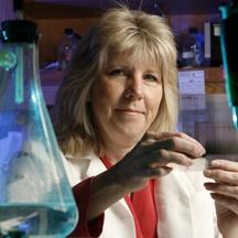 Carol F. Webb, Ph.D.