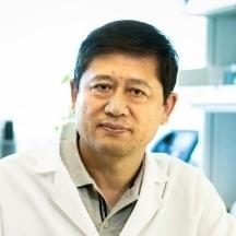 Lijun Xia, M.D., Ph.D.