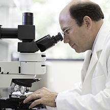 David Jones, Ph.D.