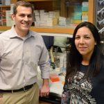 Investigating the role of obesity in arthritis