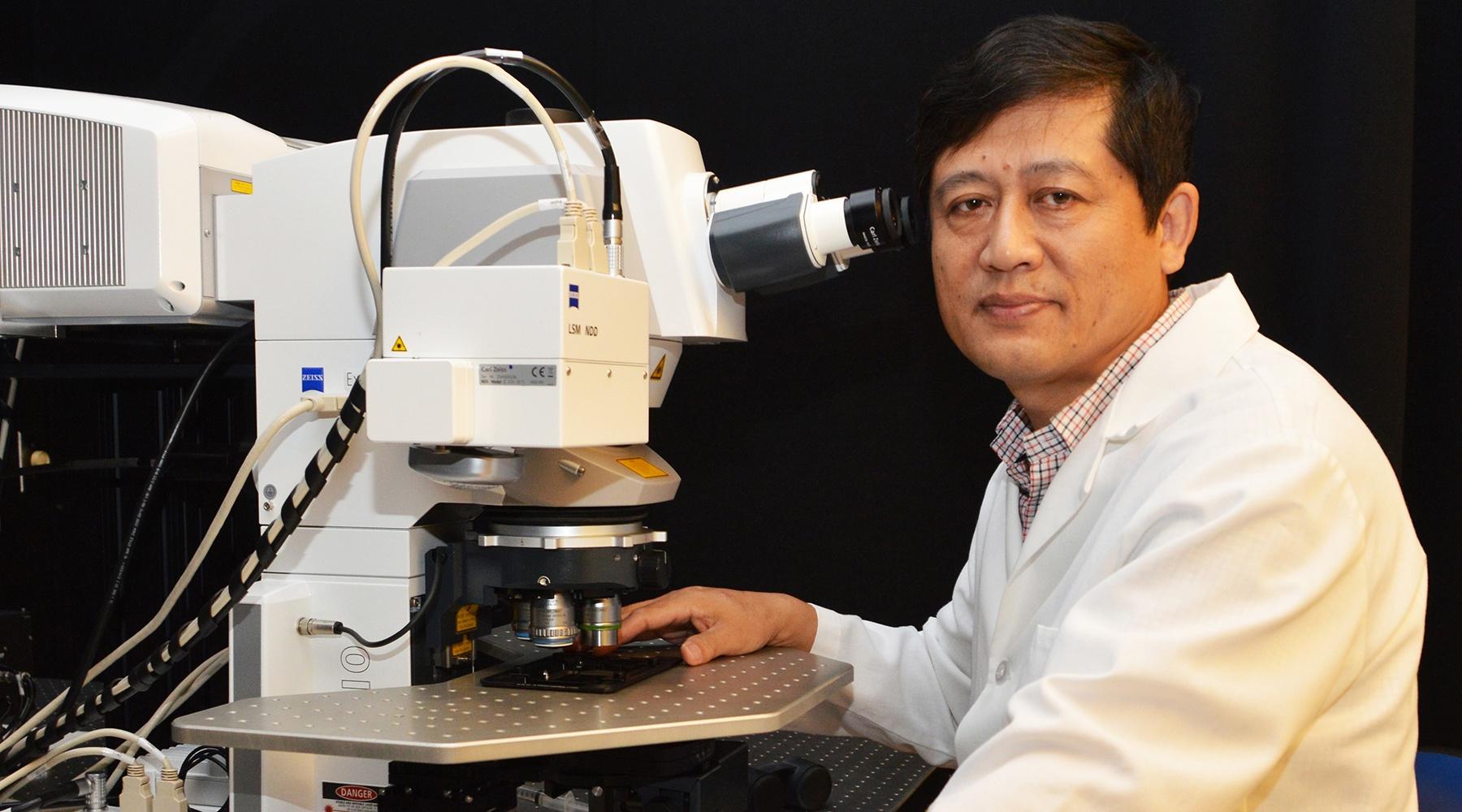 Image result for Lijun Xia, Ph.D.