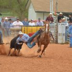 Steer wrestlers to raise funds for OMRF
