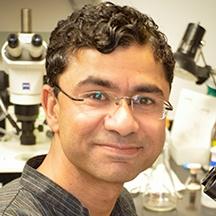 Rizwan Qaisar, Ph.D.