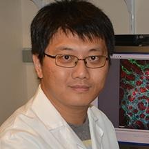 Pengchun Yu, Ph.D.